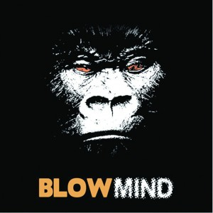 cover: Blowmind