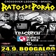 cover: Ratos De Porao, Nuclear, Deafness By Noise, CC @ Boogaloo, Zagreb 24/09/2019
